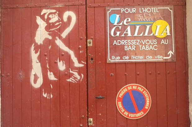Arles Monkey