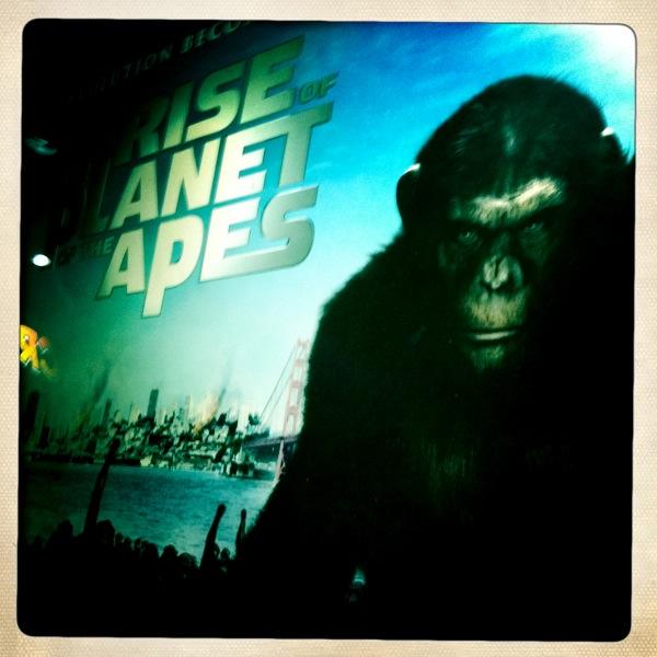 movie monkey