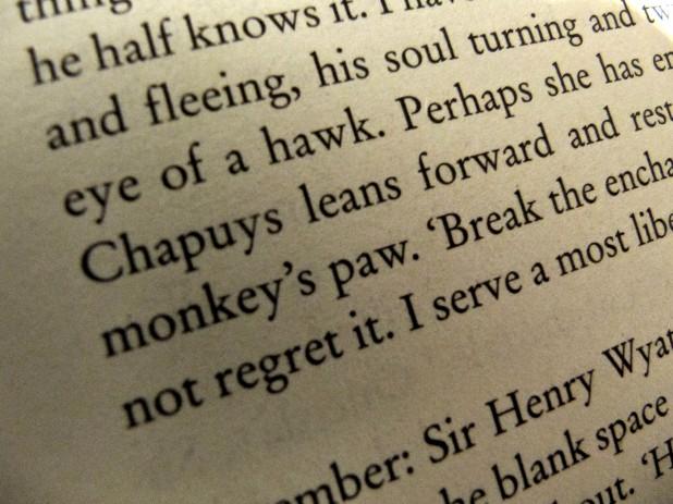 monkey in a story