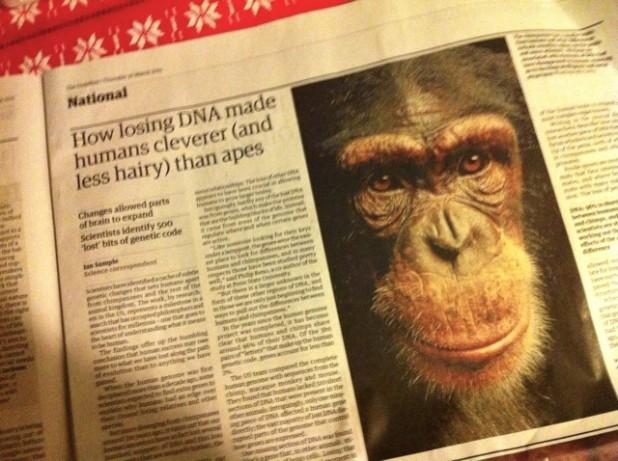 news monkey